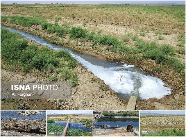 عبور کانال فاضلاب از میان مزارع شهرستان بهارستان