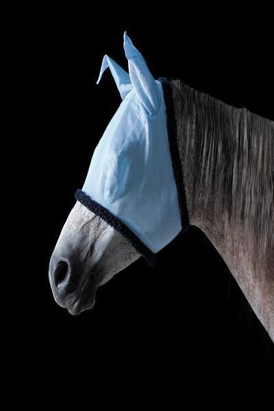ماسک و نقاب مخصوص اسب ها (تصاویر)