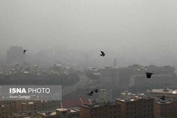 لزوم مشارکت دستگاه ها برای رفع معضل آلودگی هوا