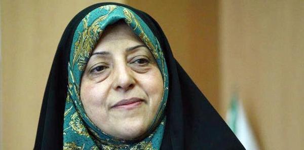 خبرنگاران ابتکار تصویب لایحه حمایت از زنان را به بانوان شکیبا ایرانی تقدیم کرد