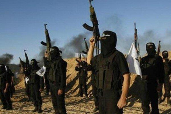 بازگرداندن داعش به عراق جزو اولویت های آمریکا است